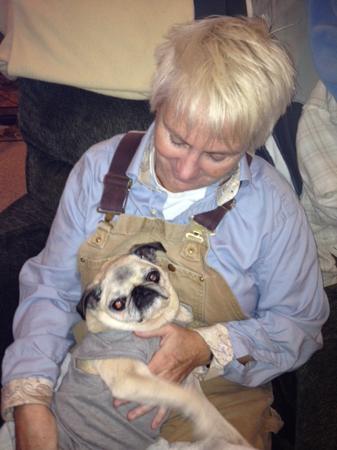 Dog Chiropractor treatment for 15 year old pug, PeggySue